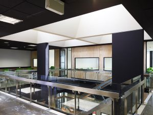 gallery-office-Ceilings-img-2